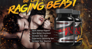 Buy Muscle Force FX